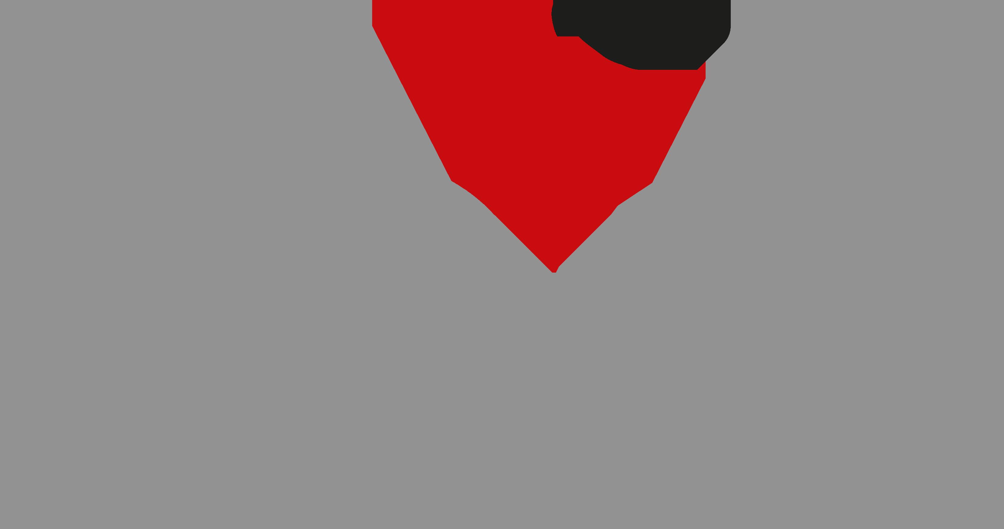 Vögeli AG